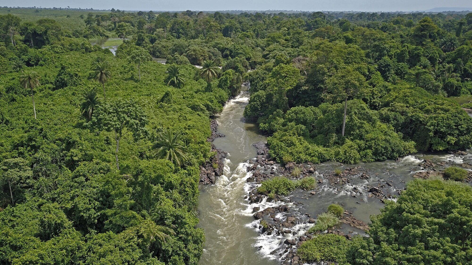 Bandama River